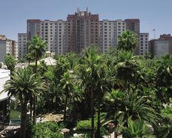 Hilton Grand Vacations Club at the Flamingo Las Vegas, Nevada